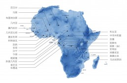 电子货物跟踪单的国家分布图